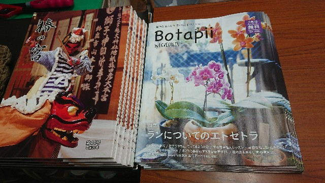 f:id:tosshii-plants:20180112214926j:image