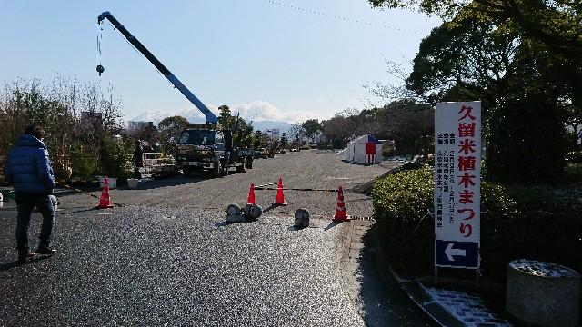 f:id:tosshii-plants:20180207193730j:image