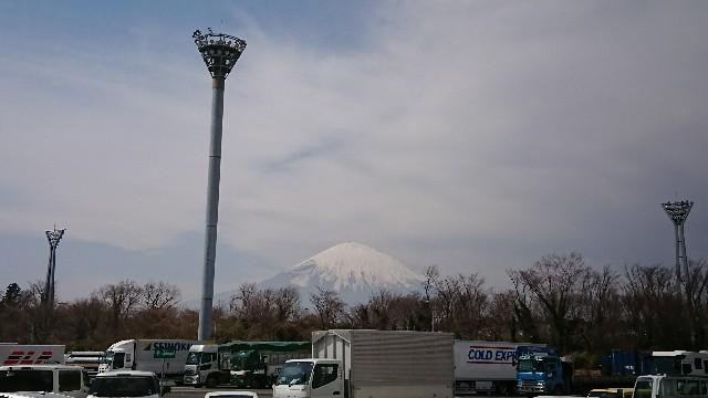 f:id:tosshii-plants:20180315234759j:image