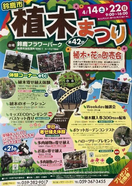 f:id:tosshii-plants:20180413212834j:image