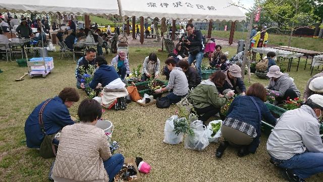 f:id:tosshii-plants:20180414215634j:image