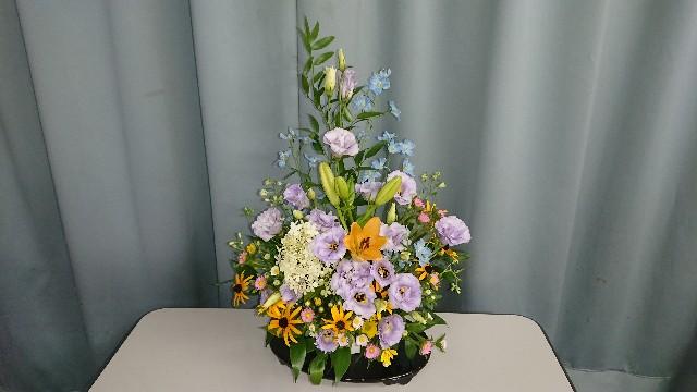 f:id:tosshii-plants:20180810223743j:image