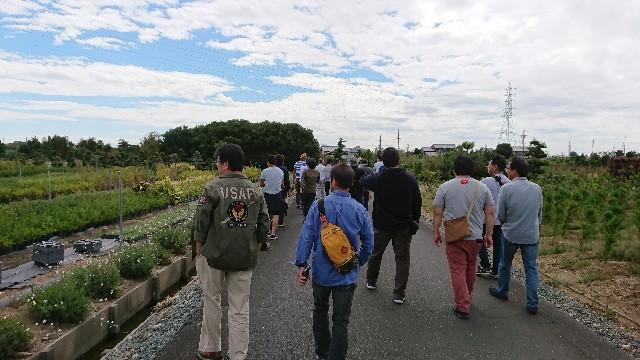 f:id:tosshii-plants:20181005190739j:image