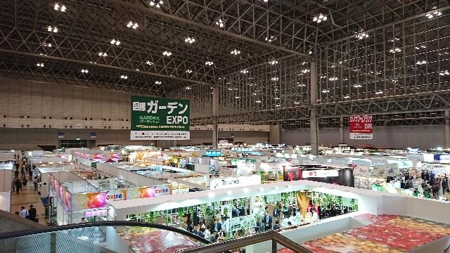 f:id:tosshii-plants:20181012204200j:image