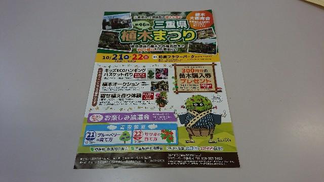f:id:tosshii-plants:20181019220842j:image
