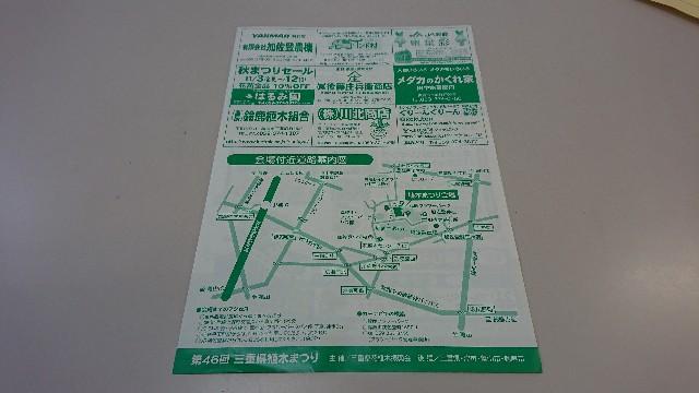 f:id:tosshii-plants:20181019221020j:image