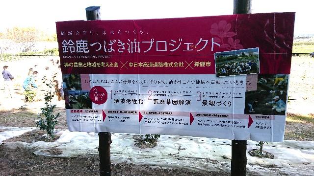 f:id:tosshii-plants:20181118212839j:image