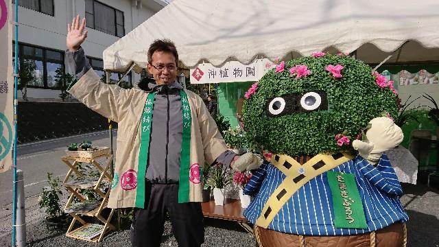 f:id:tosshii-plants:20181201214247j:image