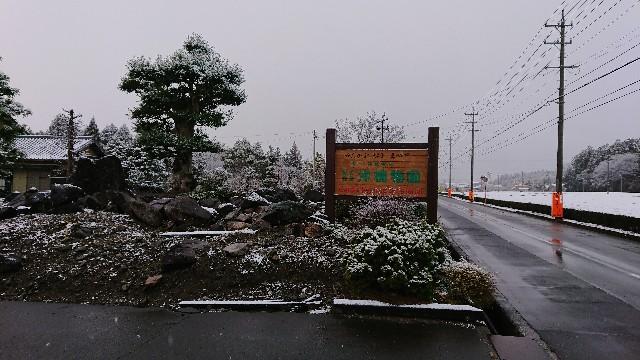 f:id:tosshii-plants:20181228225150j:image