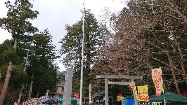 f:id:tosshii-plants:20190106213635j:image