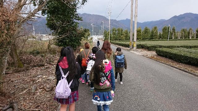 f:id:tosshii-plants:20190317132225j:image