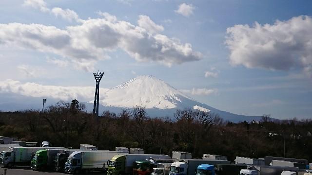 f:id:tosshii-plants:20190318220544j:image