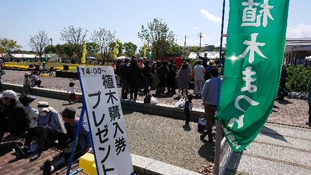 f:id:tosshii-plants:20190420233308j:image