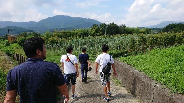 f:id:tosshii-plants:20190822204008j:image