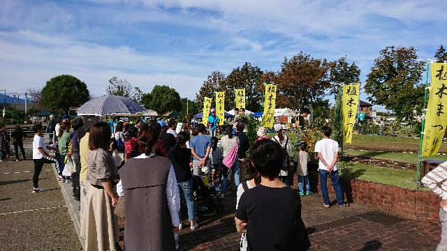 f:id:tosshii-plants:20191020225253j:image