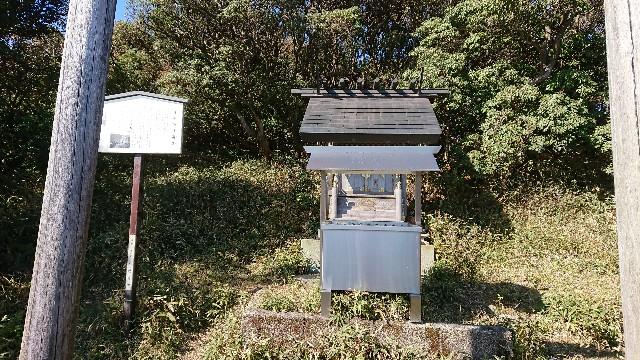 f:id:tosshii-plants:20191111232804j:image