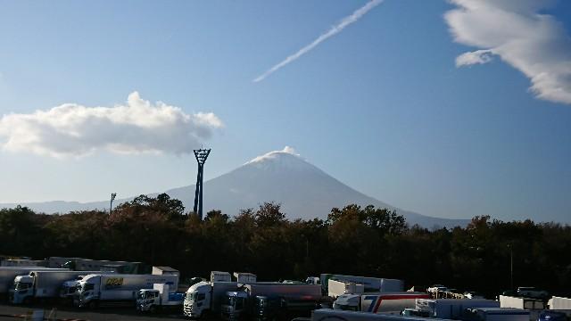 f:id:tosshii-plants:20191119132517j:image