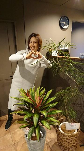 f:id:tosshii-plants:20200325221429j:image