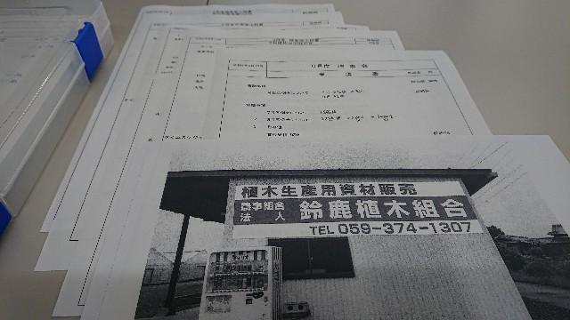 f:id:tosshii-plants:20200616082126j:image