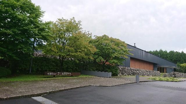 f:id:tosshii-plants:20200712213514j:image