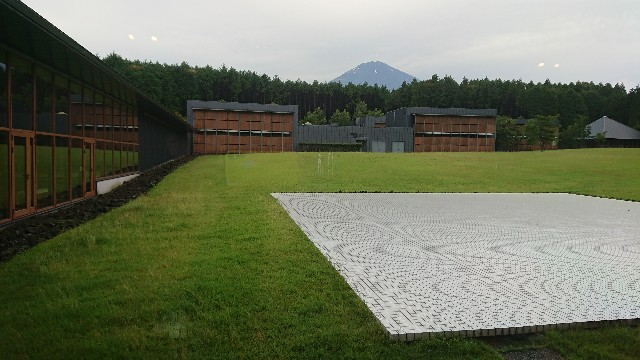 f:id:tosshii-plants:20200712235017j:image