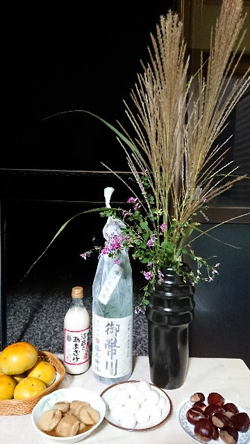 f:id:tosshii-plants:20201001224011j:image