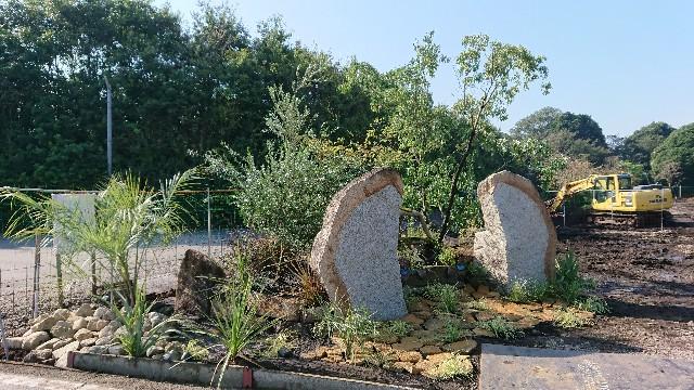 f:id:tosshii-plants:20201021225346j:image