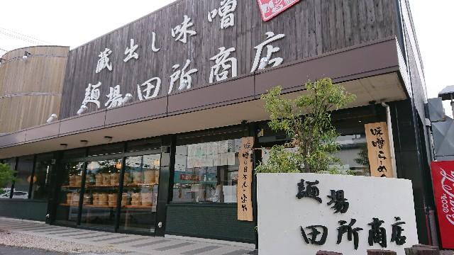 f:id:tosshii-plants:20201115222028j:image