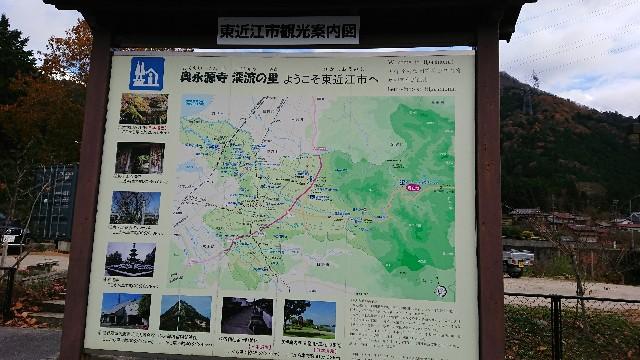f:id:tosshii-plants:20201123203825j:image