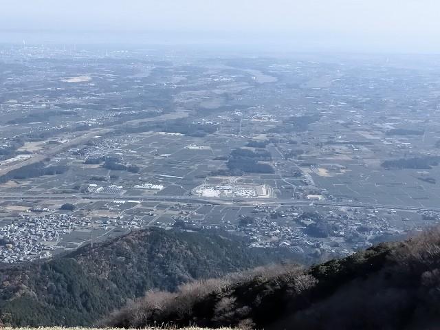 f:id:tosshii-plants:20201206225045j:image