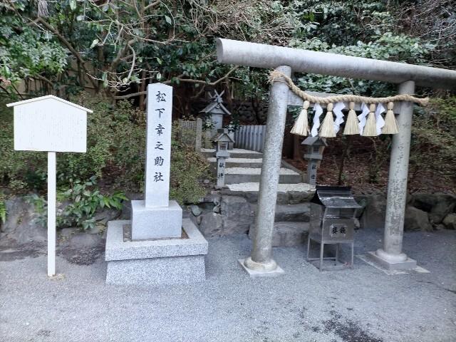 f:id:tosshii-plants:20210111200724j:image
