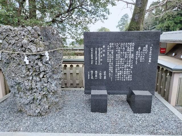 f:id:tosshii-plants:20210111200914j:image