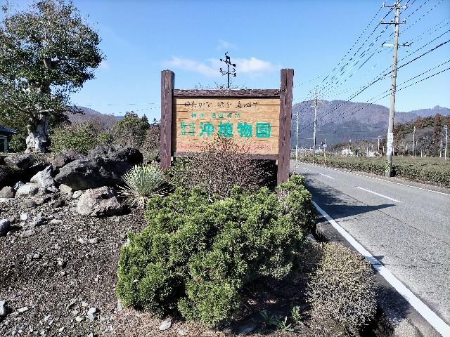 f:id:tosshii-plants:20210125223508j:image