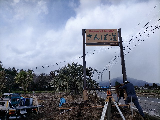 f:id:tosshii-plants:20210217215850j:image