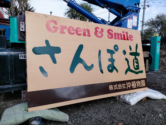 f:id:tosshii-plants:20210217215910j:image