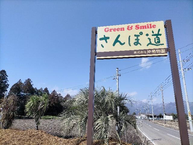 f:id:tosshii-plants:20210220205913j:image