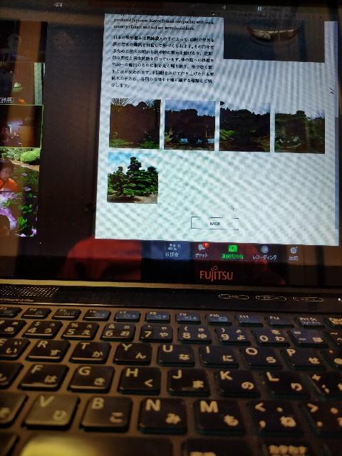 f:id:tosshii-plants:20210222204726j:image
