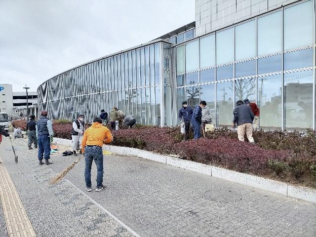 f:id:tosshii-plants:20210228192849j:image