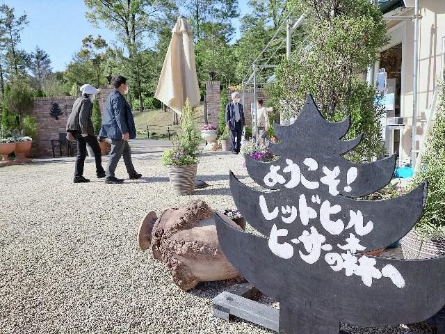 f:id:tosshii-plants:20210425223603j:image