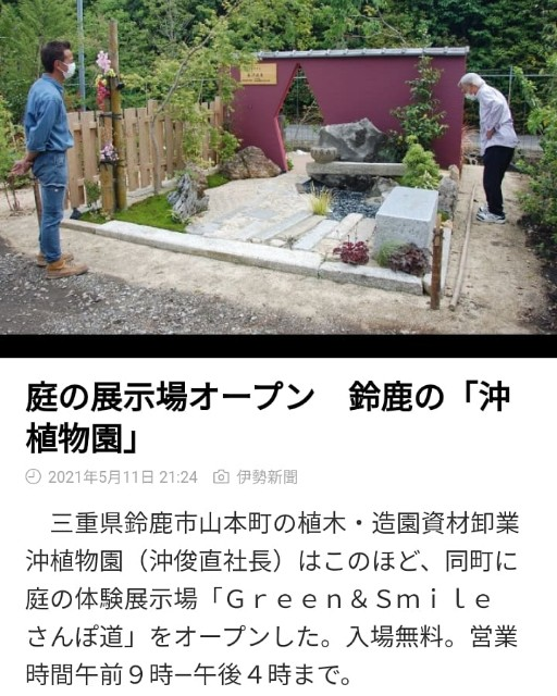 f:id:tosshii-plants:20210512125741j:image