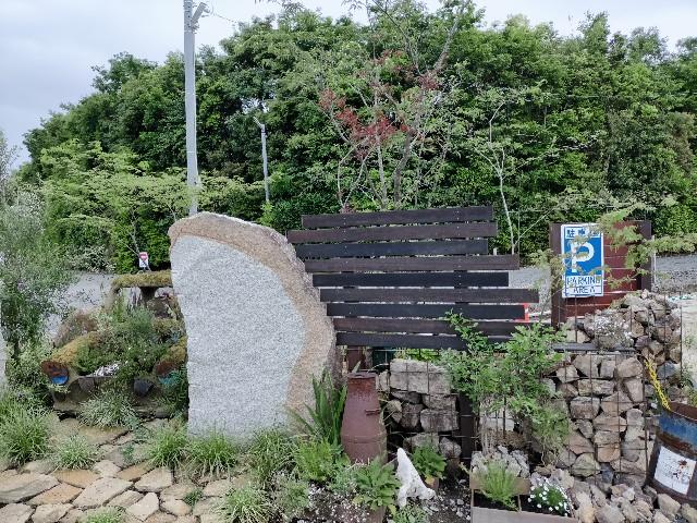 f:id:tosshii-plants:20210513194008j:image