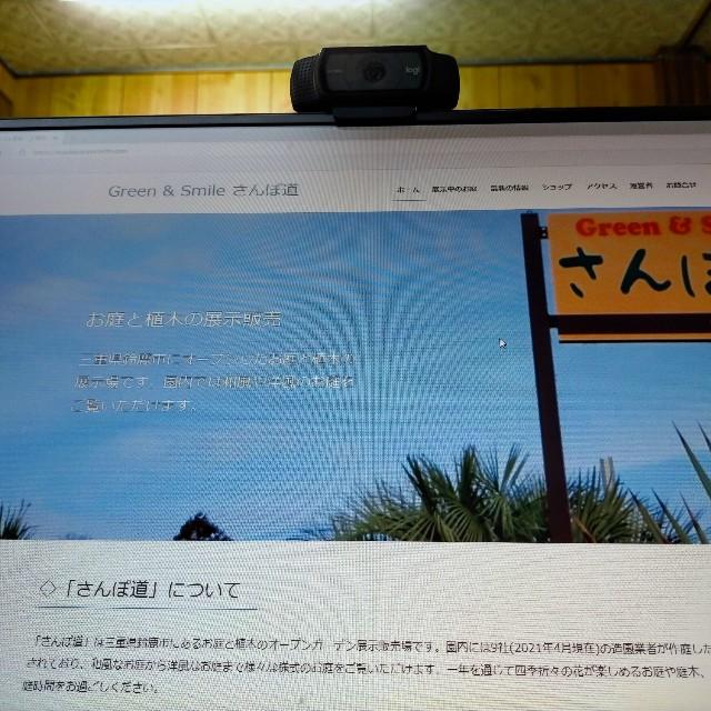 f:id:tosshii-plants:20210601213842j:image