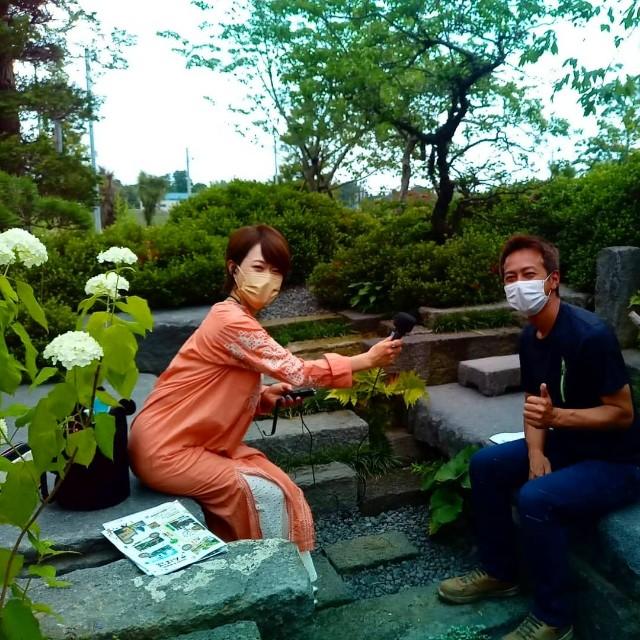 f:id:tosshii-plants:20210611223714j:image