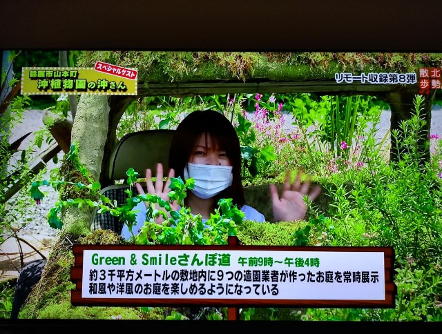 f:id:tosshii-plants:20210716225746j:image