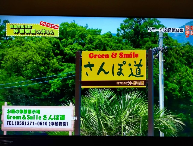 f:id:tosshii-plants:20210716225757j:image