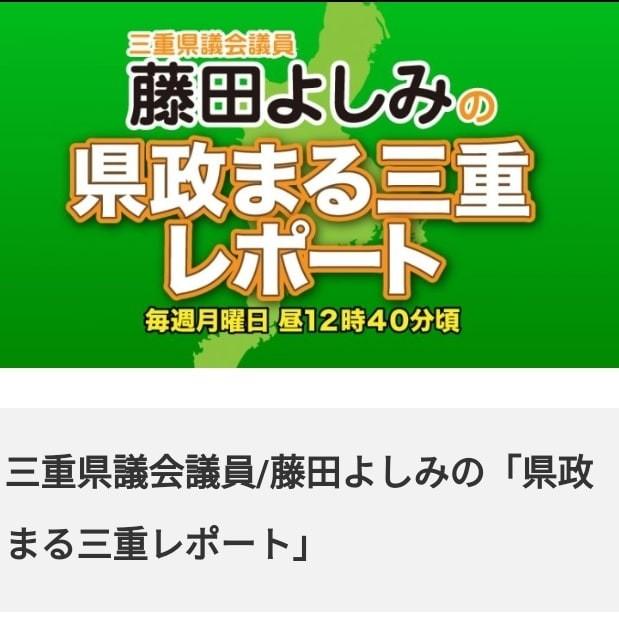 f:id:tosshii-plants:20210806104727j:image