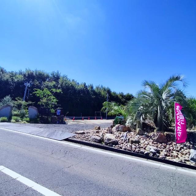 f:id:tosshii-plants:20210919133815j:image