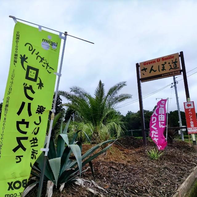 f:id:tosshii-plants:20211010204847j:image