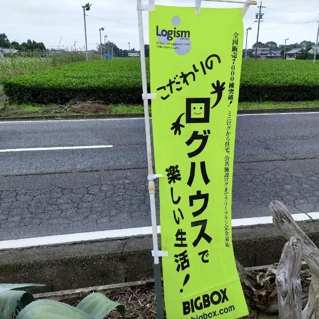 f:id:tosshii-plants:20211010204859j:image