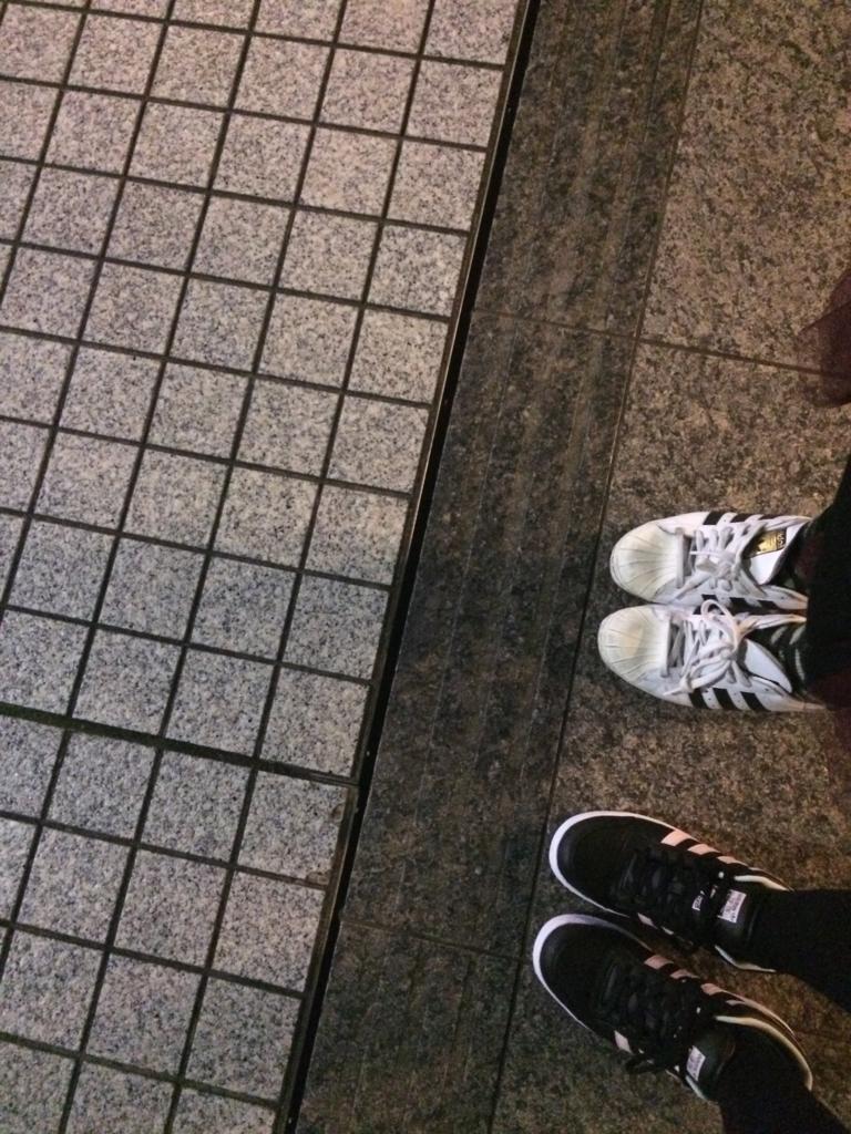 f:id:totemonemuiyo:20170101144003j:plain